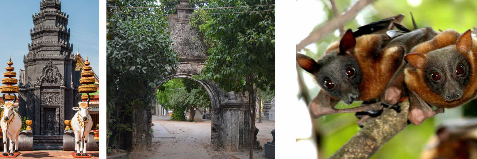 Обзорная экскурсия в Камбодже